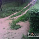 mIMG_20110608_165348