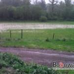 mIMG_20110608_174702